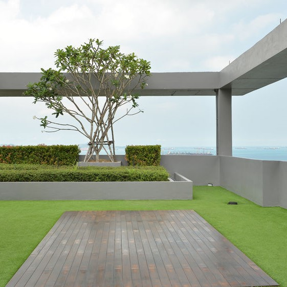 rooftop view from a green roof