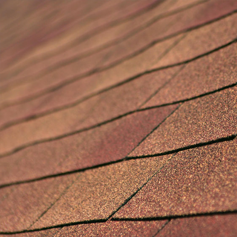 warping shingles